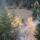 Both Mária képei  -  Őszi képek a Nagyhagymás aljából