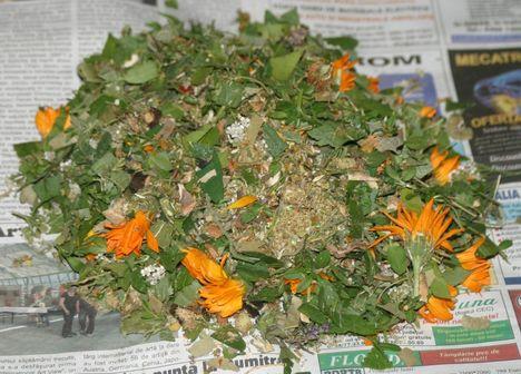Gyógynövény keverék a Marica Komplex Reuma kenőcsébe