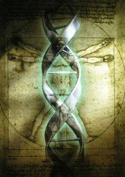Da Vinci+DNS
