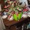 Kaktuszom, nov.22