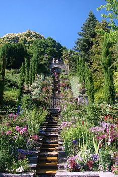 a  nyugalom  kertje