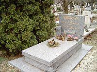 Fényes Szabolcs és felesége Csikós Rózsi sírja
