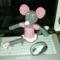 Fénykép495 Egerek