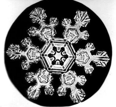 Bentley_Snowflake11