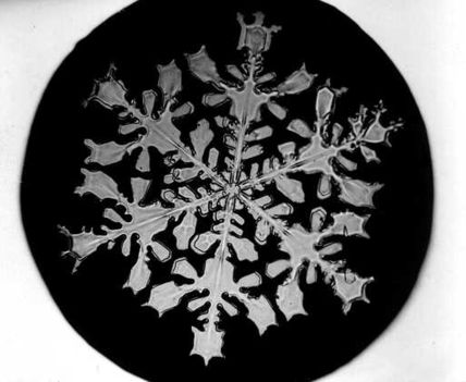 Bentley_Snowflake18