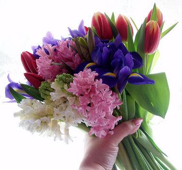 jácint és tulipán csokor