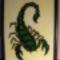 Smaragd skorpió