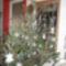 karácsonyfa diszeim