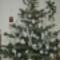 Karácsonyfám 2012.