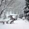 A tél által teritett asztal