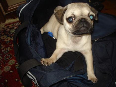 kényelmes a táska