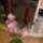 Kőszegi Maca virágai