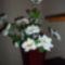 horgolt virágok 007