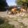 Csatorna_2012-001_1509347_1790_t