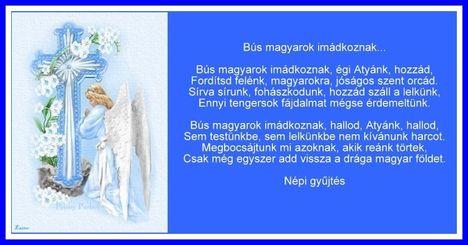 Bus magy