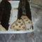Házikó süti