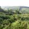 Brennbergbánya és környéke