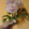 IMG_20130119_220312