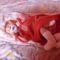 Kis unokám Viktória 3