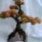 bonsay_orang    http://vika-zlotnik.ucoz.net/blog/2011-06-22-83
