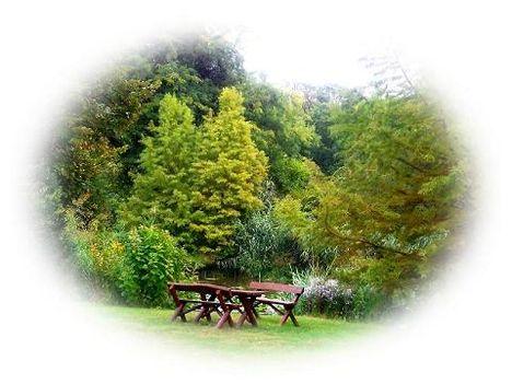 botananikus kert