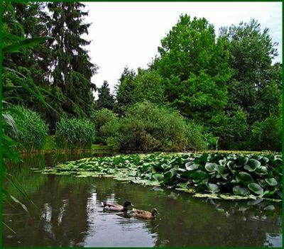 Nyiregyhaza Tuzson Janos botanikus kert