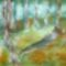 Őszi erdő 2