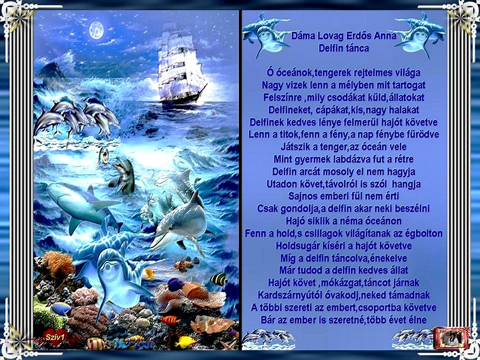 delfines idézetek Kultura: Delfin tánca:Dáma Lovag Erdős Anna (kép)