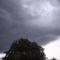 2012 június.Távoli diófa és a felhők.