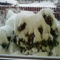 2013.jan.17. Nehéz a sok hó