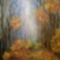 Erdő ősszel