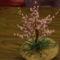 Virágzó barackfa