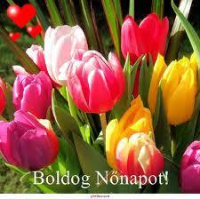 NőNAP images (1)