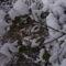 téli fotók