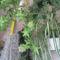 tavasz a balkonon 014