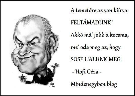 Hofi mondása