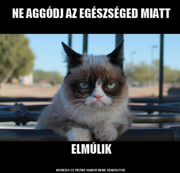 how to say cat in hungarian