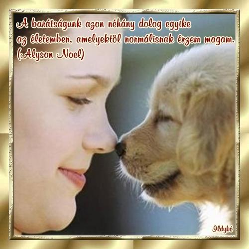 idézetek a baráti szeretetről Barátság: barátság és szeretet 1 (kép)