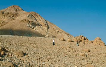 Judea-11.sivatag