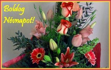 395849_fcc99368af_s virág névnapra
