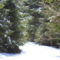 Még mindig tél van Balánbányán 3