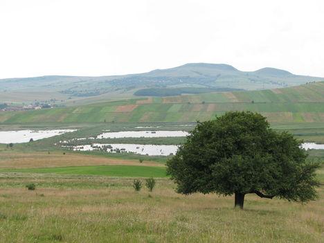 Hargita megye természetvédelmi területei 6
