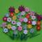 121 Virágözön