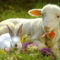 Kellemes Húsvéti Ünnepeket. 11