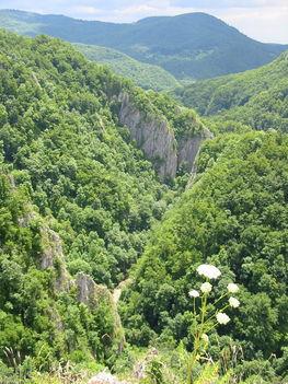 Hargita megye természetvédelmi területei 3