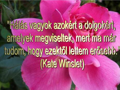 Virágok és bölcsességek 28