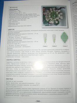 Virágos bonsai 2