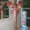 szobrok 174