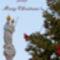 boldog_karacsonyt_merry_christmas_1595676_2348_n