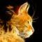 Fractal_Cat_jokuci